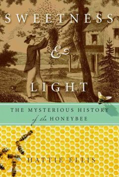 Sweetness & light : the mysterious history of the honeybee cover