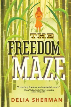 freedom maze cover