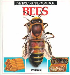 The fascinating world of--bees cover