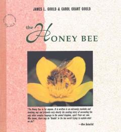 honey bee cover