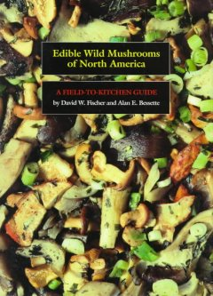 edible wild mushrooms of north america :a field-to-kitchen guide