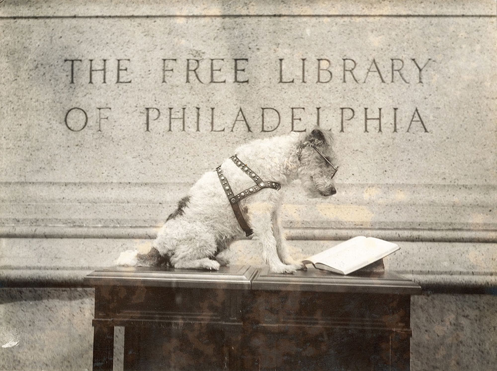 Knee-Hi, the Free Library of Philadelphia mascot