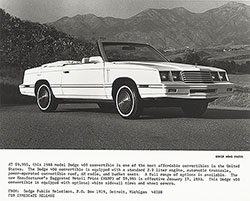 Dodge 400 Convertible: 1983