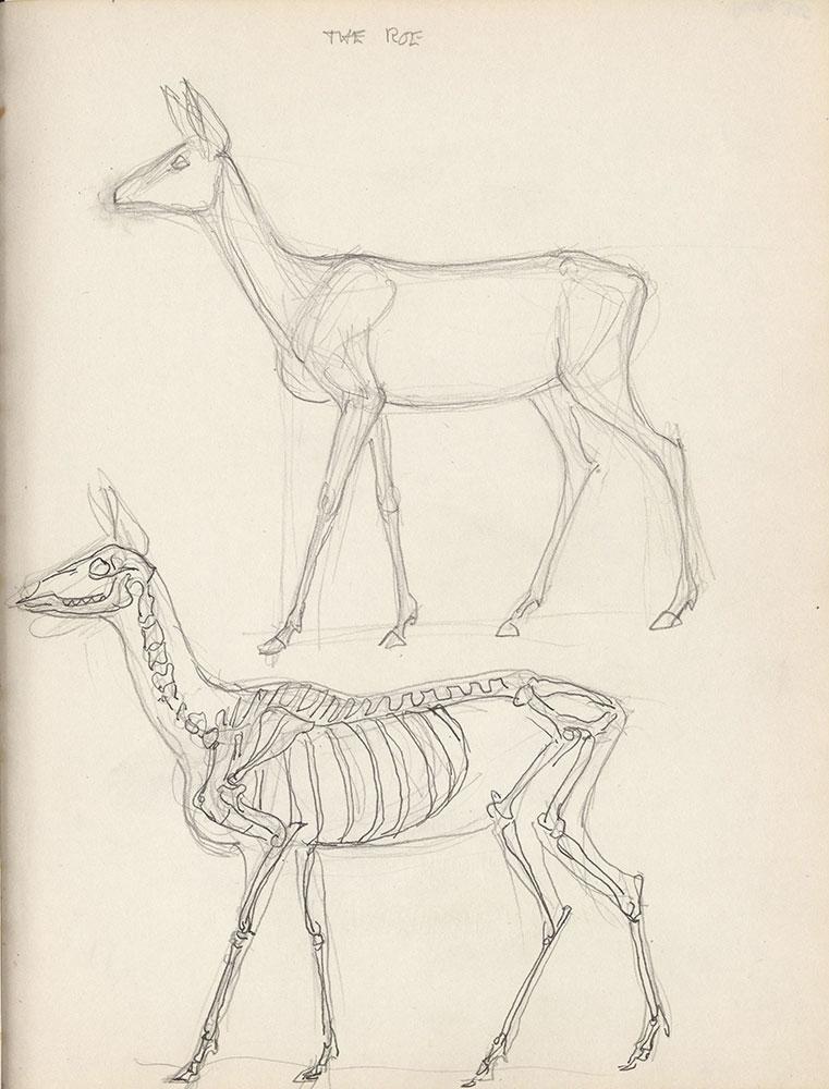 Black sketchbook for Life Story, page 306