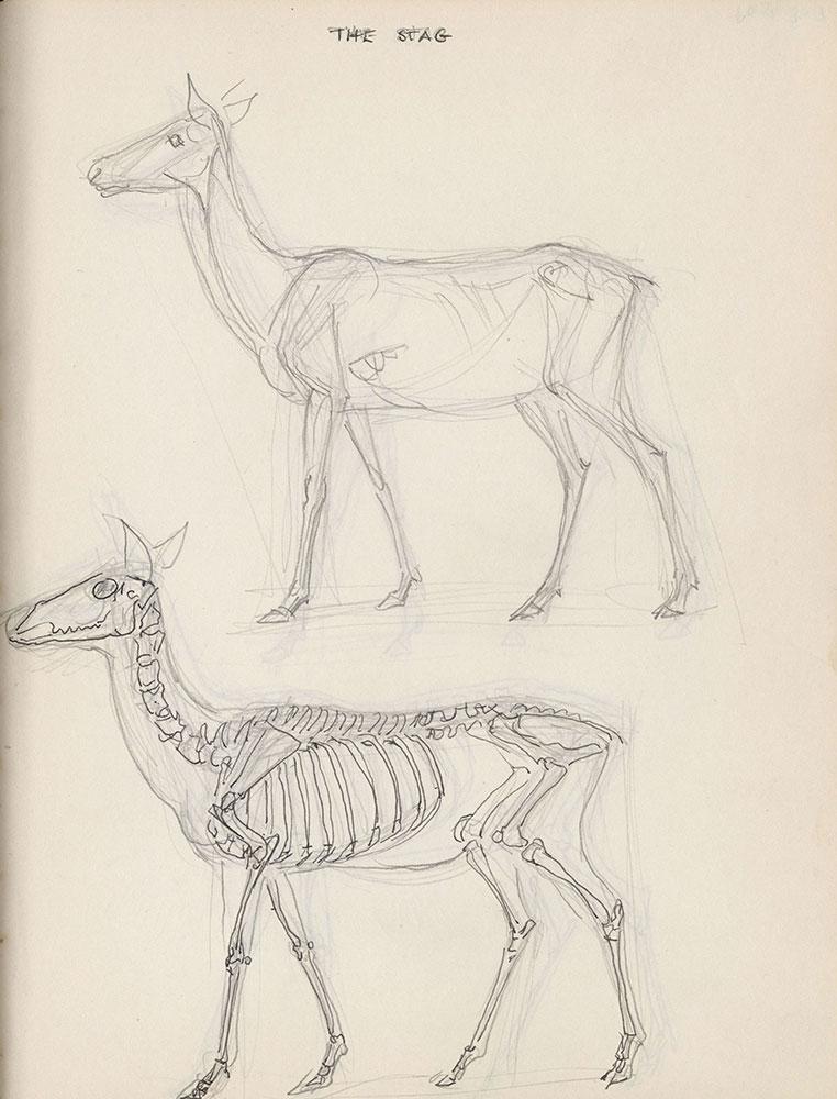 Black sketchbook for Life Story, page 308