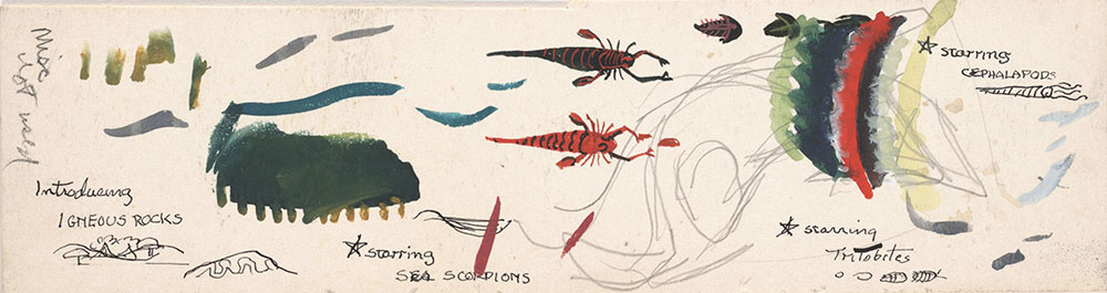 Sketch of sea scorpions and cephalopods, for Life Story