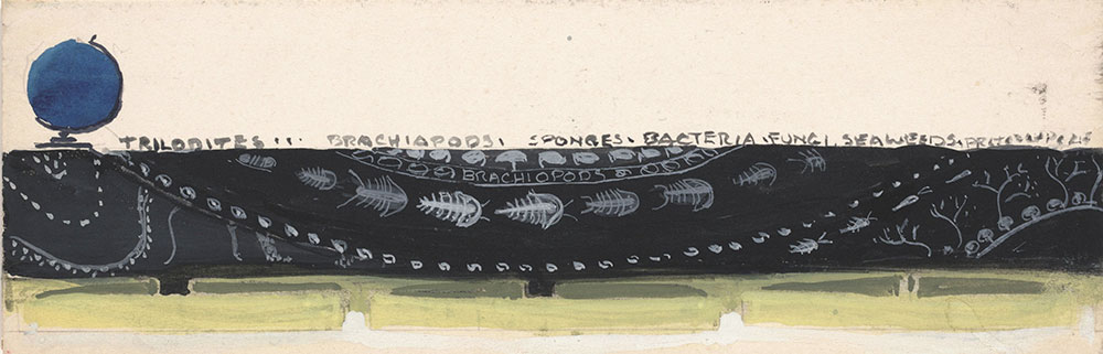 Sketch of black decorative band featuring trilobites, for Life Story