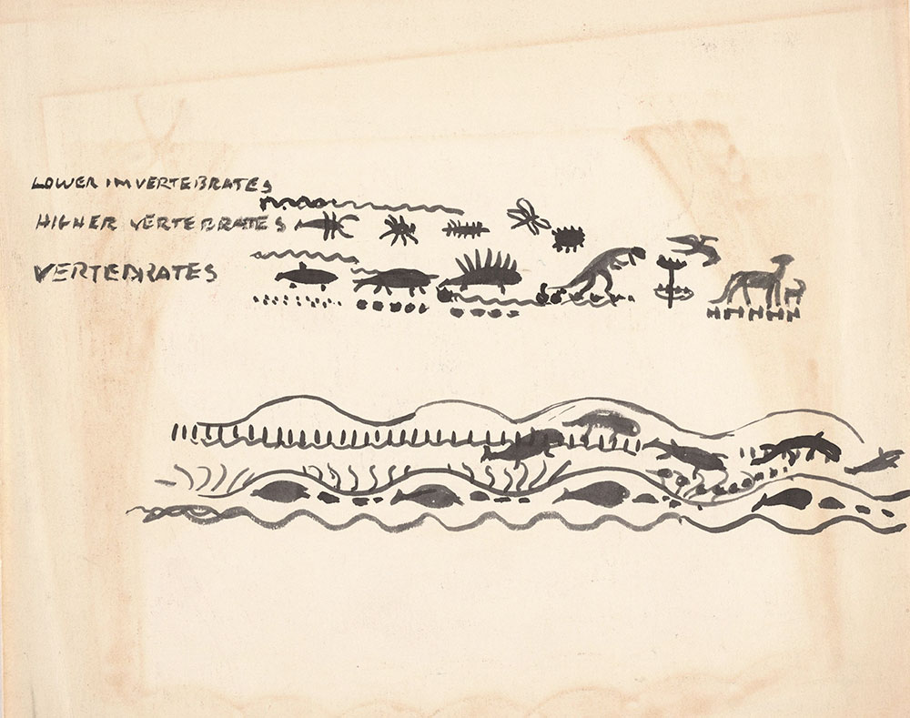 Preliminary art for front endpapers of Life Story