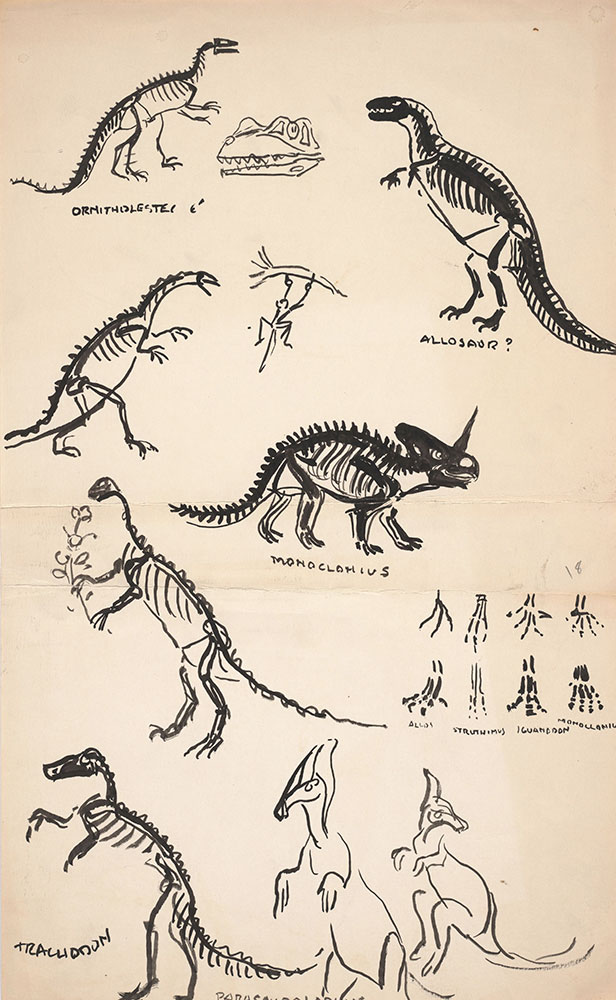 Preliminary art of dinosaur skeletons, for Life Story