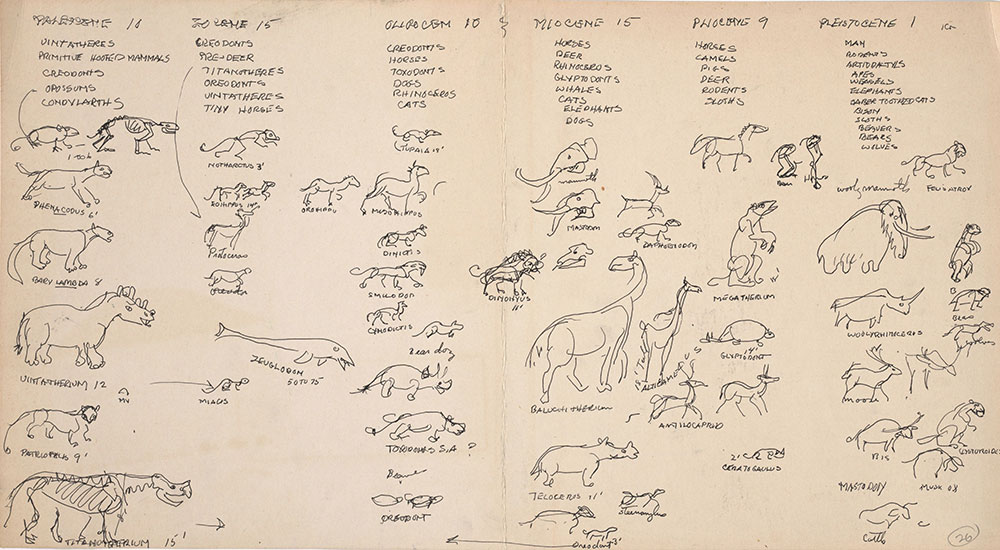 Preliminary art of animals arranged by epoch, for Life Story
