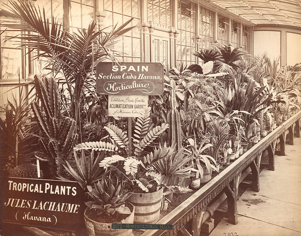 Jules Lachamnes' [sic] exhibit-Horticultural Hall