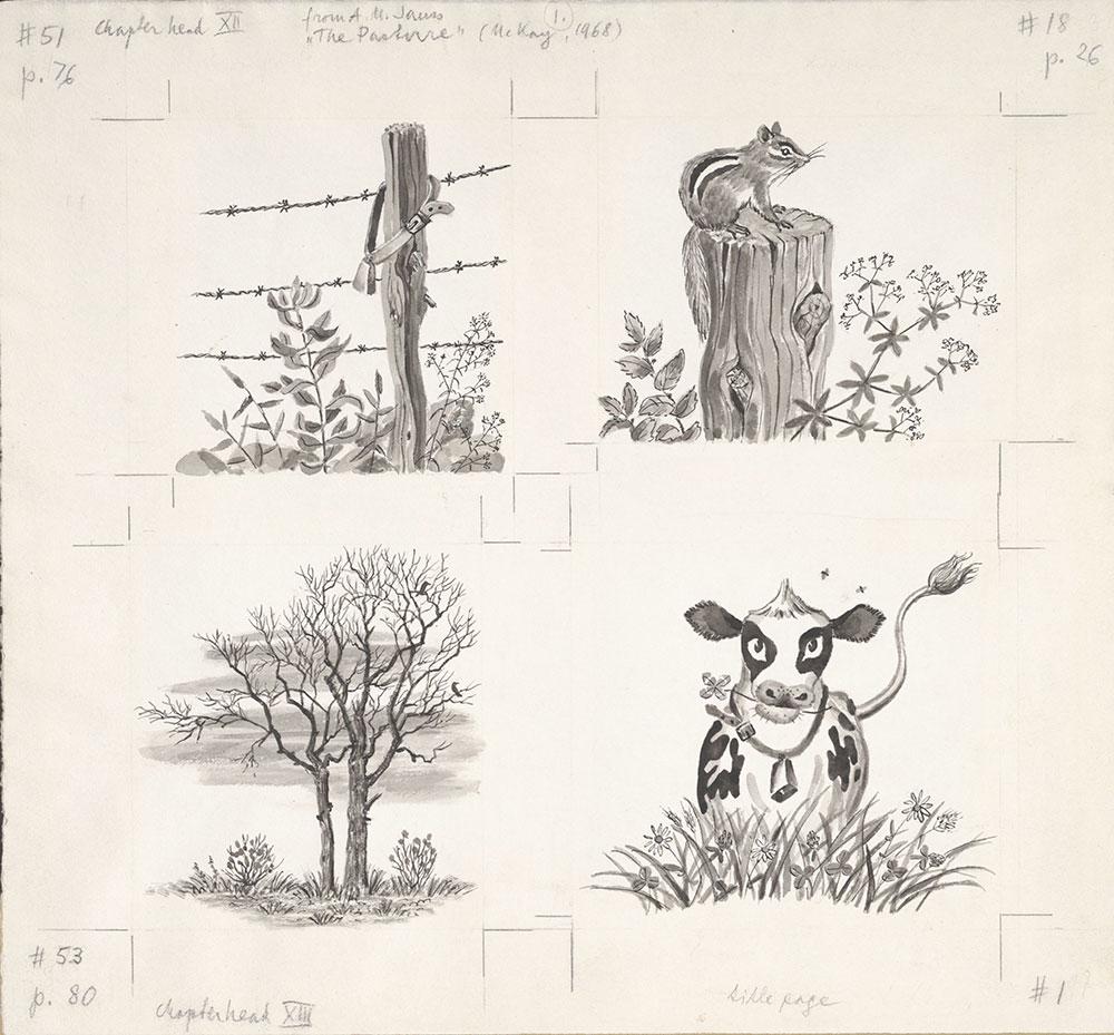 Jauss - 4 Illustrations for