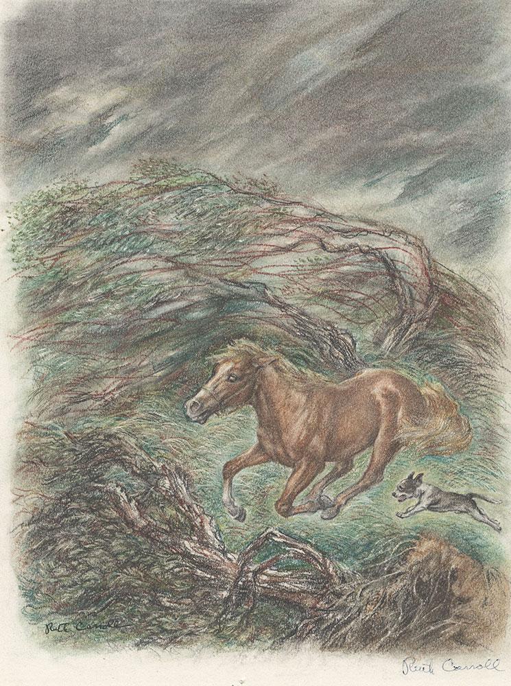 Carroll - Runaway Pony, Runaway Dog - Page 41