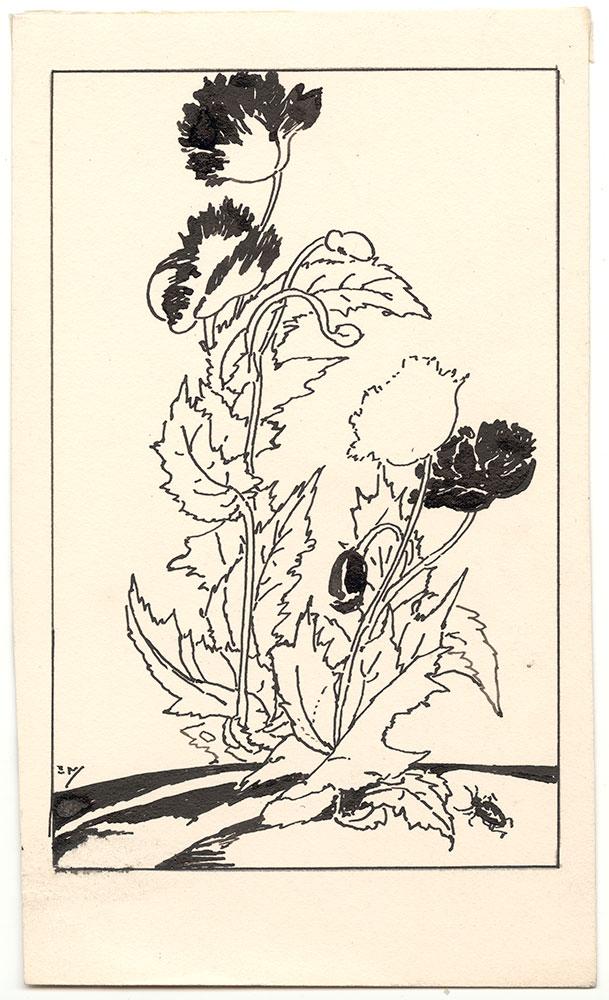 MacKinstry - Study of Tulips