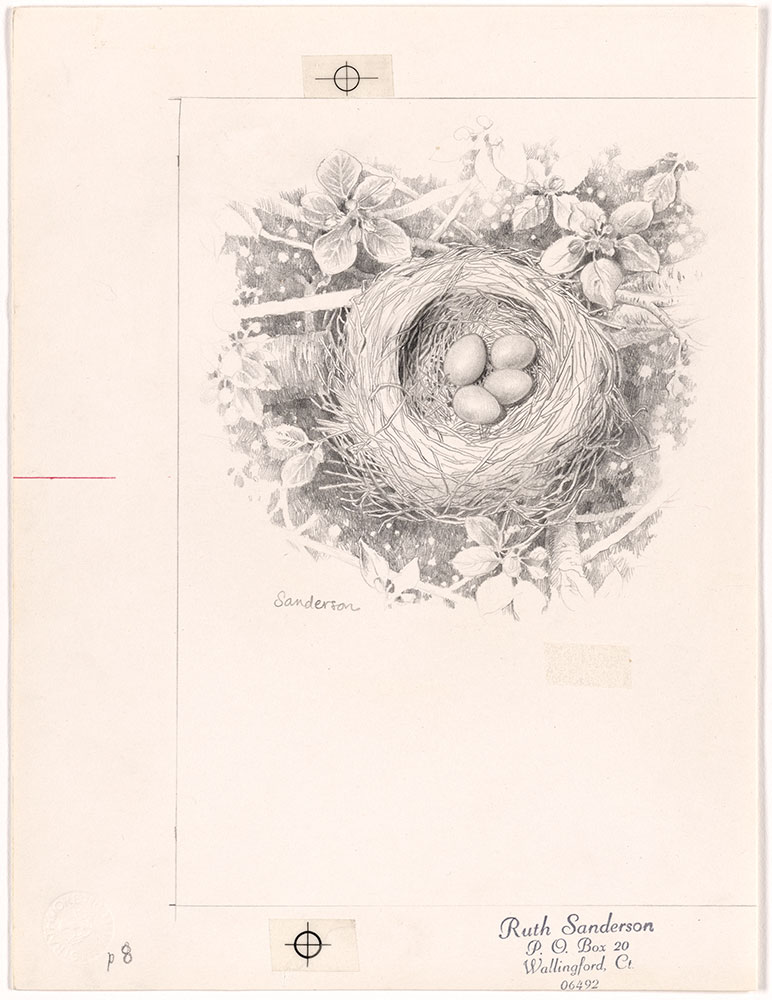 Sanderson - Five Nests - Page 8
