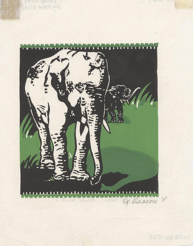 Untitled [Elephants]