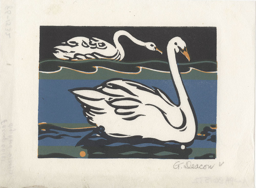 Untitled [Swans]