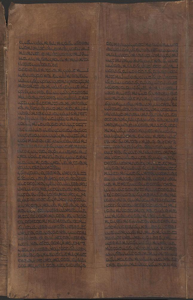 [Torah scroll fragment]