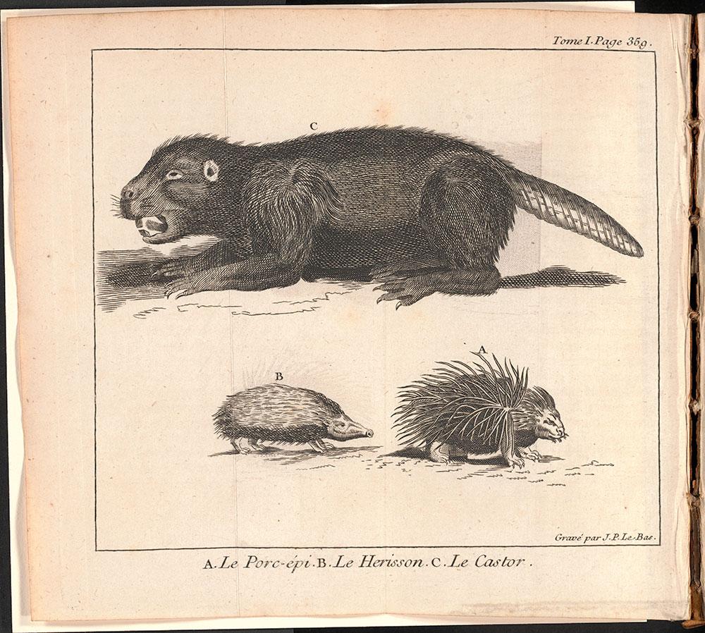 Le spectacle de la nature, ou, Entretiens sur les particularités de l'histoire naturelle : qui ont paru les plus propres à rendre les jeunes-gens curieux, & à leur former l'esprit