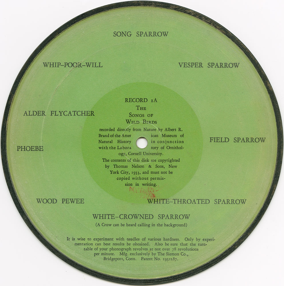The Songs of the Wild Birds-Record 1A