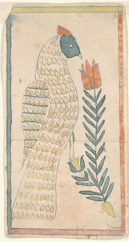 Drawing (Bird with Tulip)
