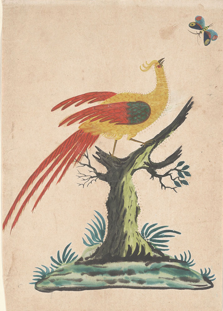 Drawing (Bird of Paradise and Butterfly)