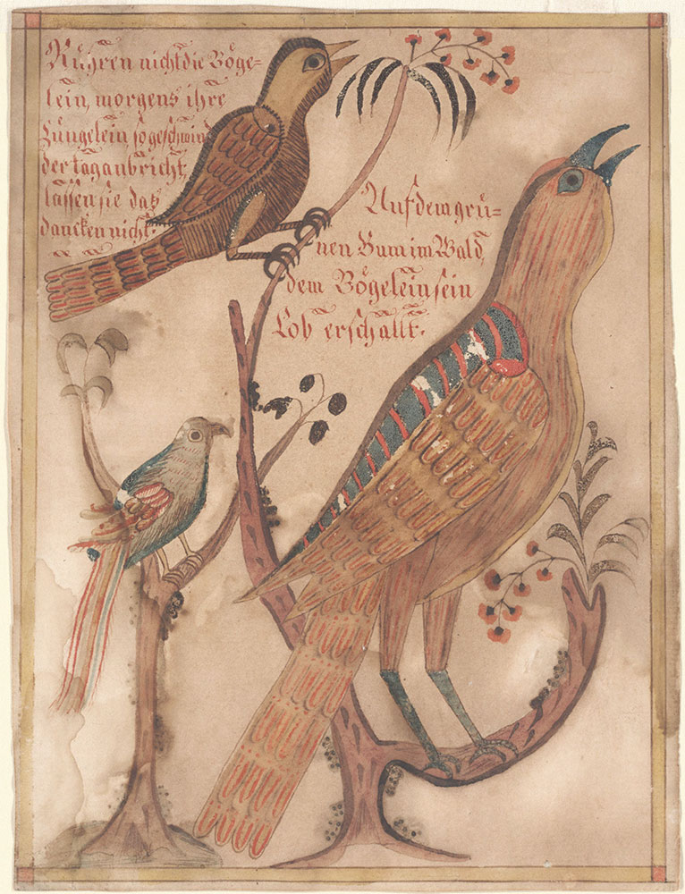 Drawing (Birds on Trees)