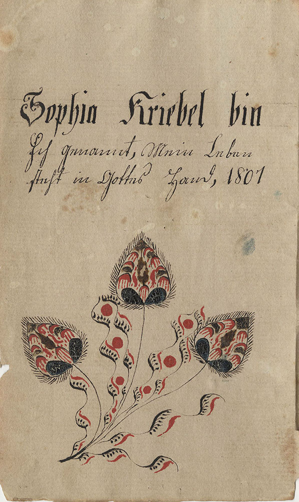 Sophia Kriebel bin ich genannt...1801