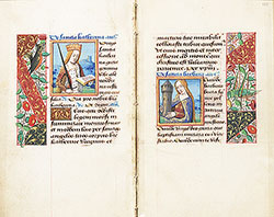 Book of Hours, use of Bourges icon image
