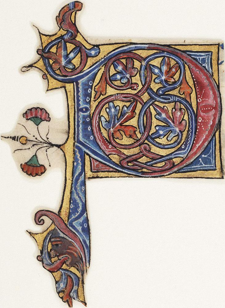 Decorated initial P