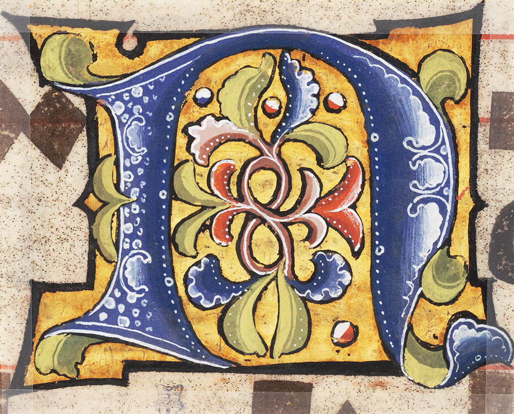 Decorated initial N