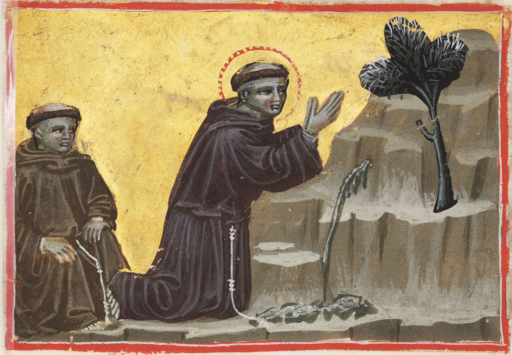 St. Francis exalts the spring and the tree