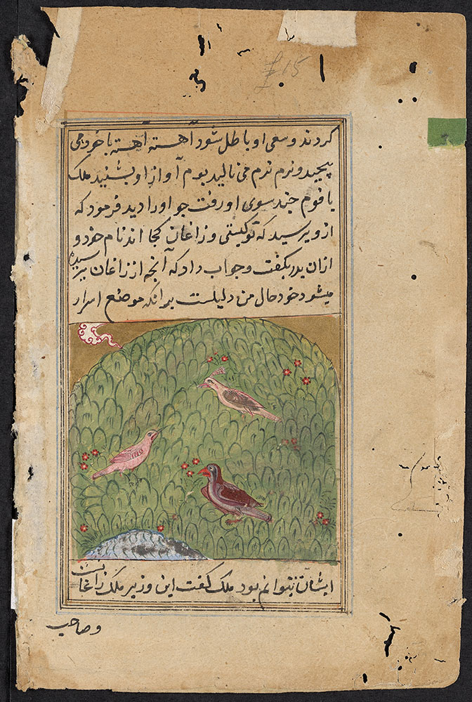 Kalila wa-Dimna Leaf, the Story of the Peacock and the Crows