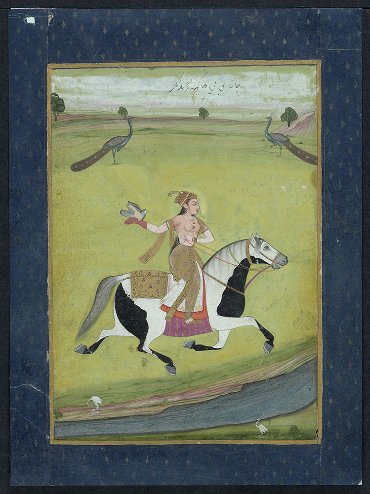 Portrait of Chand Bibi on Horseback with Her Bird and Two Peacocks