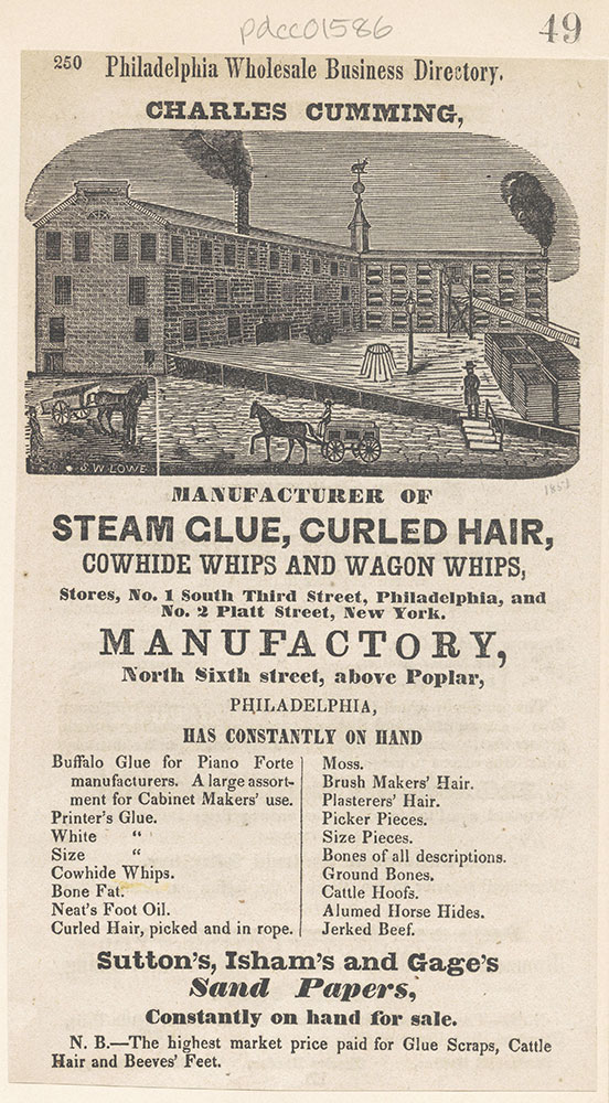 Charles Cumming, manufacturer of steam glue, curled hair, cowhide whips, etc [graphic]