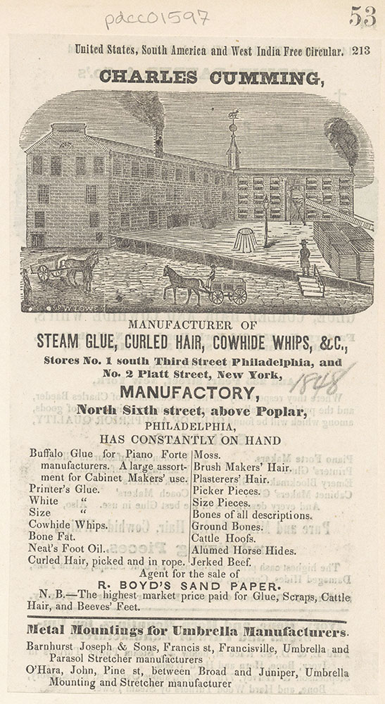 Charles Cumming, manufacturer of steam glue, curled hair, cowhide whips, etc.