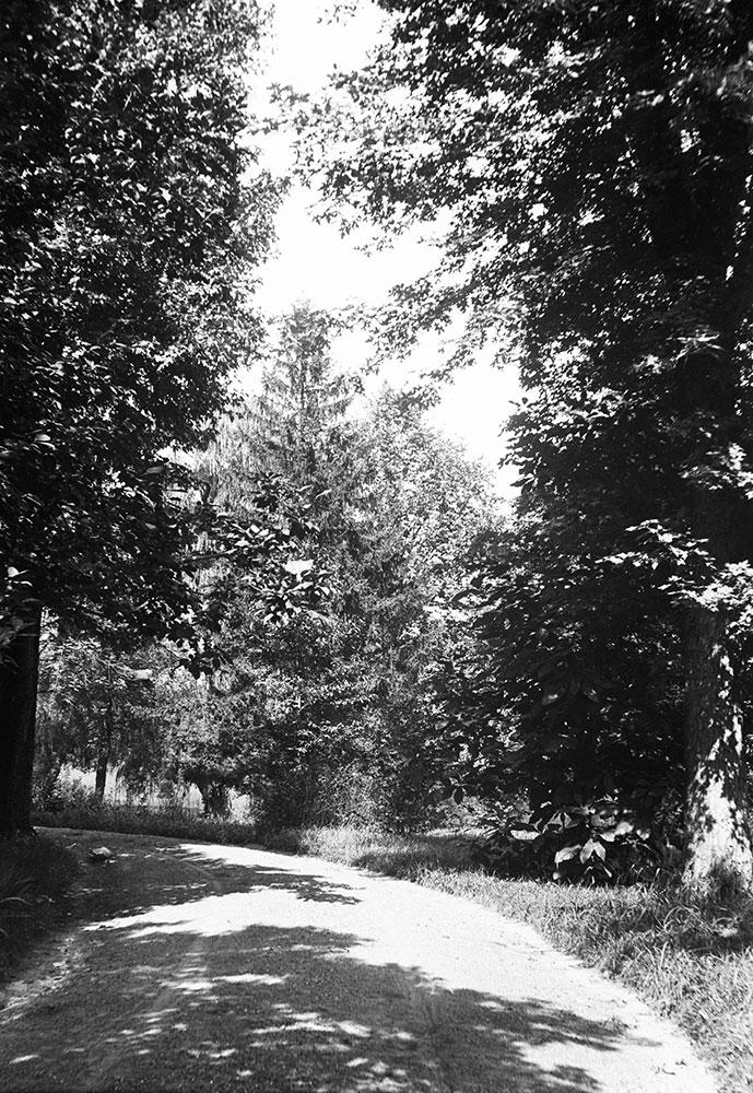 The Ferns, Fairthorne Avenue