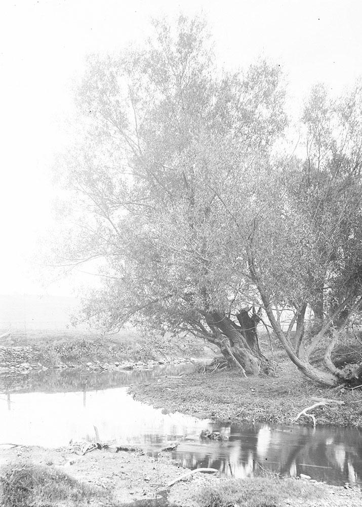 Upper Wissahickon Creek