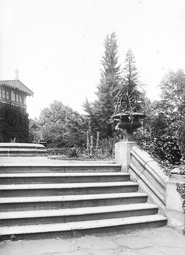 Terrace- Zoological Gardens