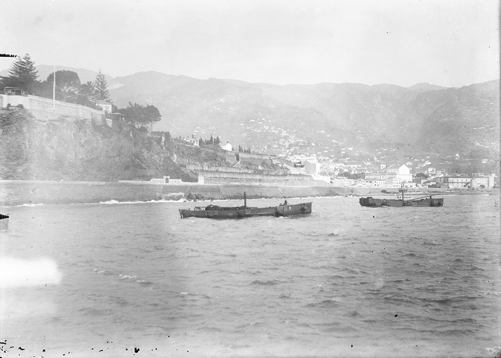 View from Steamer of Funchal, Maderia