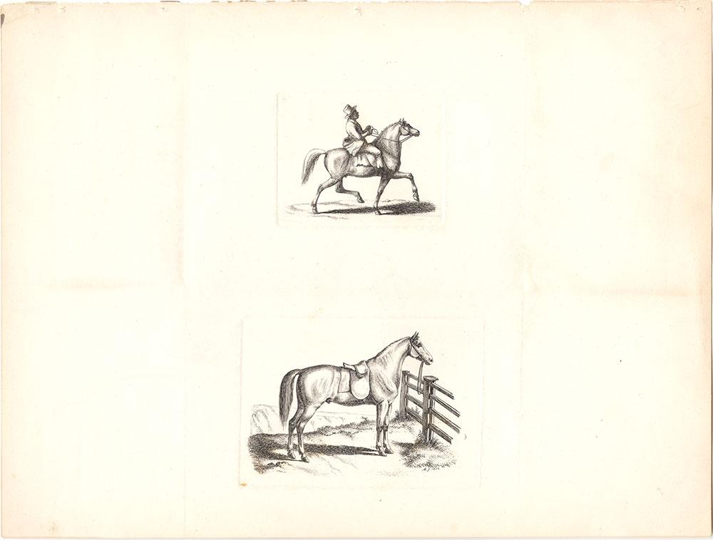 {Man Riding Horse}
