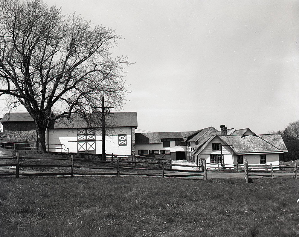 Montgomery Avenue - Villanova, PA