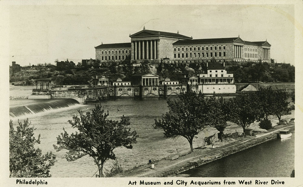 Art Museum and City Aquariums - Postcard