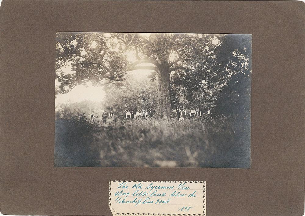 Haddington - Eckfeldt Collection, E. 1, Area Views, Transportation, No. 40