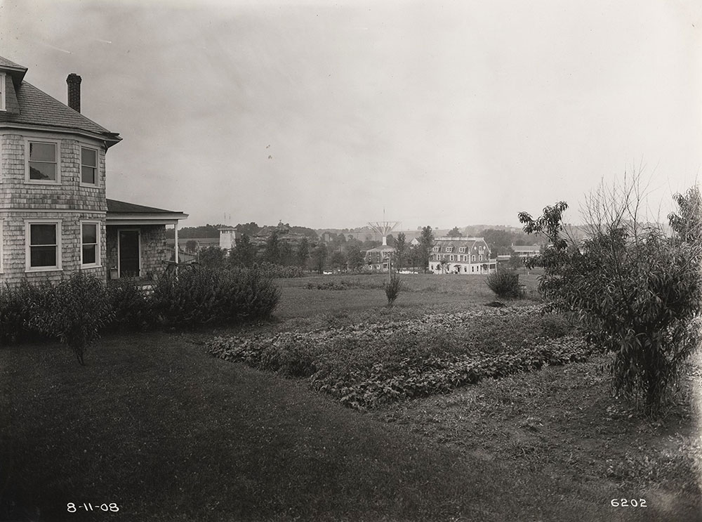 Suburban houses and gardens near Willow Grove Park