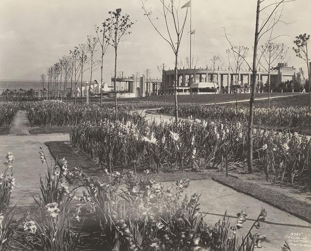 Sesqui-Centennial Gardens #5