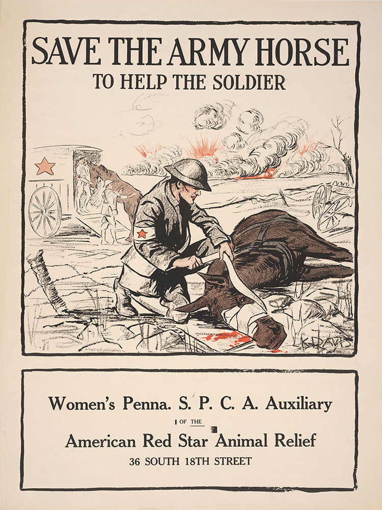 save the Army horse to help the soldier